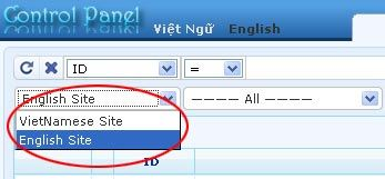 Supporting managing responsive web design vnvn cms 2.5 edit delete a category